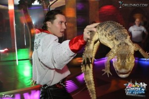 шоу с крокодилом
